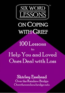 Grief expert Shirley Enebrad releases new book